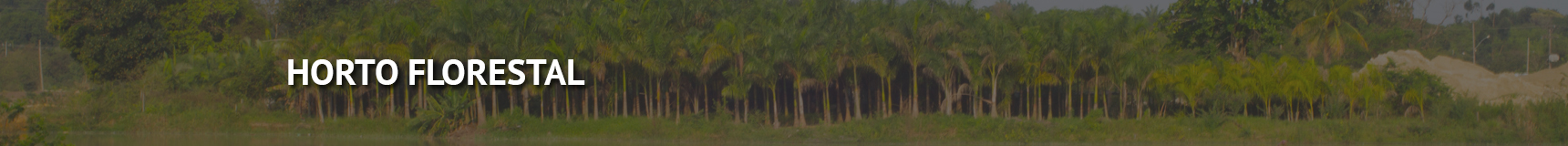 fundo_horto-florestal